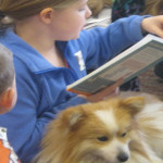 Quansa's Kid Friendly Dog Program: Part 2